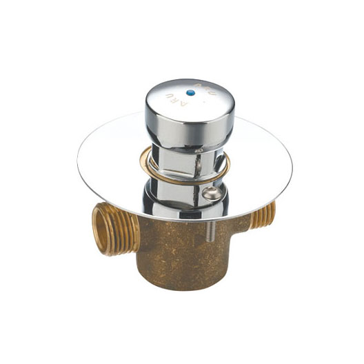 Chrome Push Valve With Wall Plate